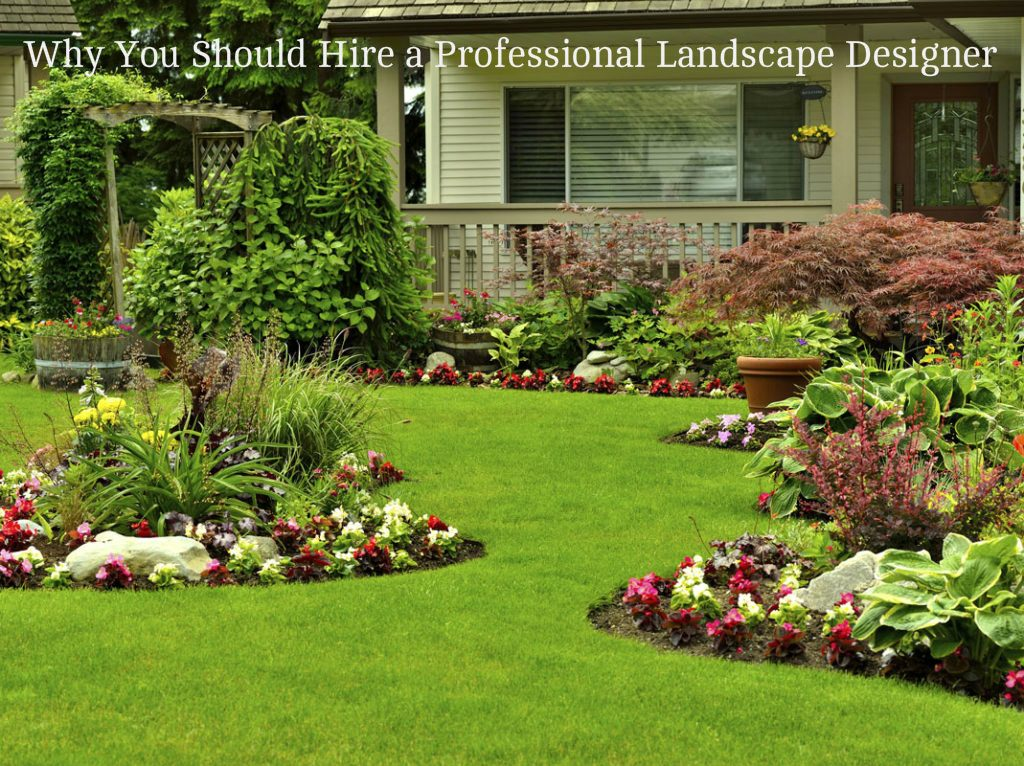 WHY YOU SHOULD HIRE A PROFESSIONAL LANDSCAPE DESIGNER