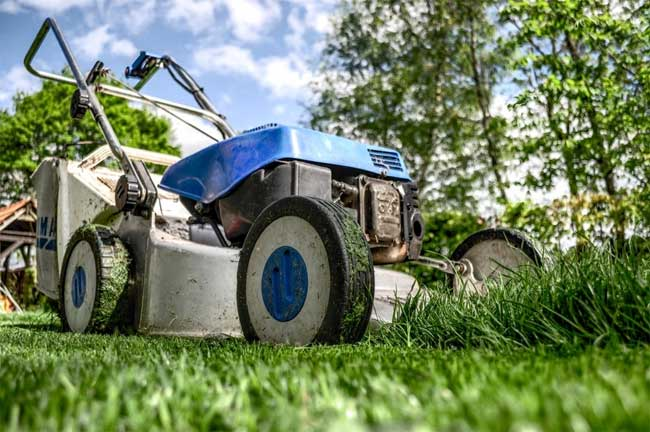 How-to-Maintain-Your-Lawn