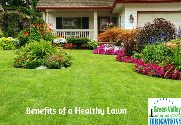 benefits-a-healthy-lawn