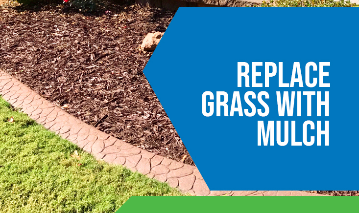 Replace Grass with Mulch