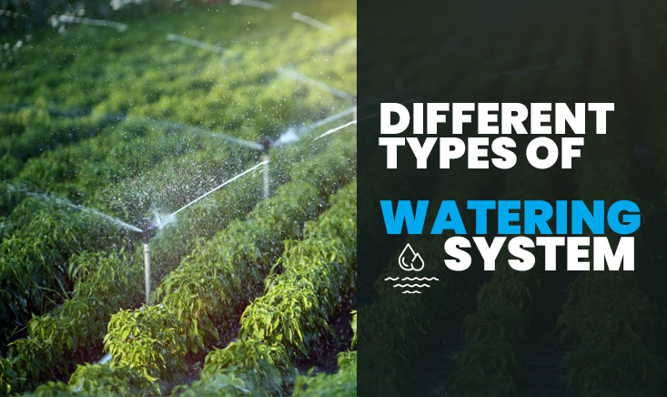 Different Types of Watering System