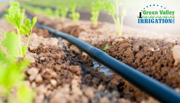 Drip System – Lawn Sprinklers